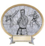 Legend Karate Oval Award Oval Resin Trophy Awards